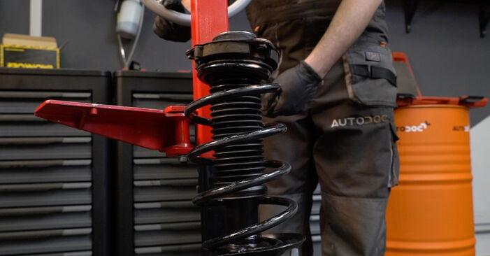 Стъпка по стъпка препоруки за самостоятелна смяна на Audi A3 8pa 2007 1.6 Амортисьор