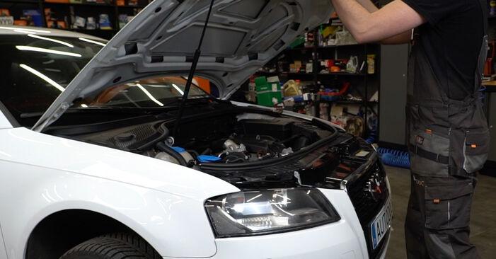 Wie Ölfilter Audi A3 8P 2.0 TDI 16V 2004 tauschen - Kostenlose PDF- und Videoanleitungen