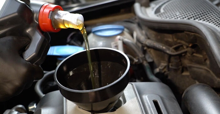 Tidsforbruk: Bytte av Oljefilter på Octavia 1z5 2012 – informativ PDF-veiledning