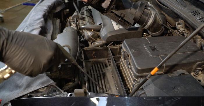 À quel point est-il difficile de le faire soi-même : télécharger le guide illustré pour le changement de Filtre à Air sur Octavia 1z5 1.6 2010