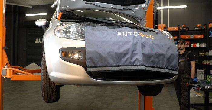 Kiek užtrunka keitimas: Fiat Punto 199 2013 Alyvos filtras - informatyvi PDF instrukcija