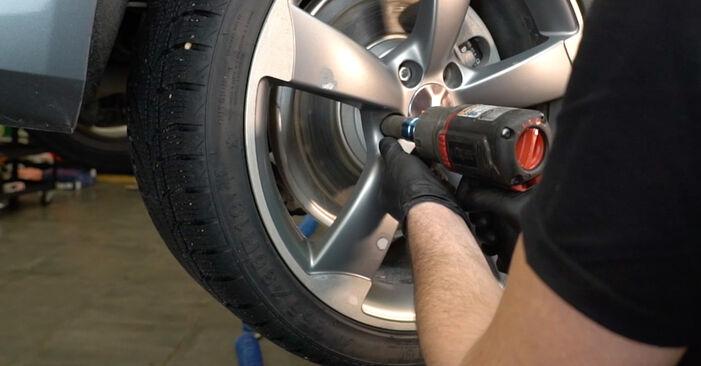 Zamenjajte Blazilnik na AUDI A4 Sedan (8K2, B8) 3.0 TDI quattro 2010 sami