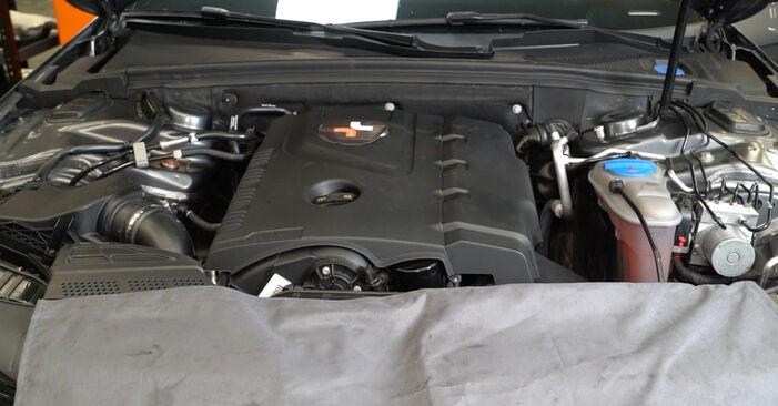 Comment changer Filtre à Huile sur AUDI A4 Berline (8K2, B8) 2010 - trucs et astuces