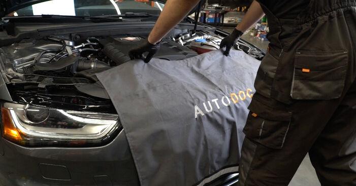 Audi A4 B8 Sedanas 1.8 TFSI 2009 Oro filtras keitimas: nemokamos remonto instrukcijos