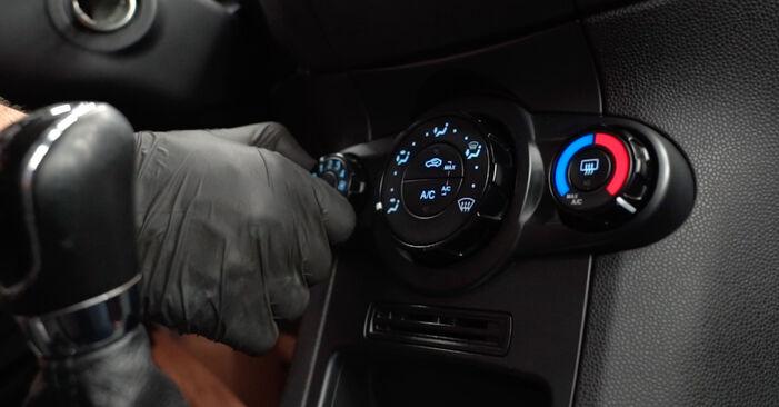 Ford Fiesta Mk6 1.4 TDCi 2010 Oro filtras, keleivio vieta keitimas: nemokamos remonto instrukcijos