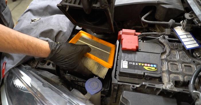 Wie FORD FIESTA 1.4 LPG 2012 Luftfilter ausbauen - Einfach zu verstehende Anleitungen online