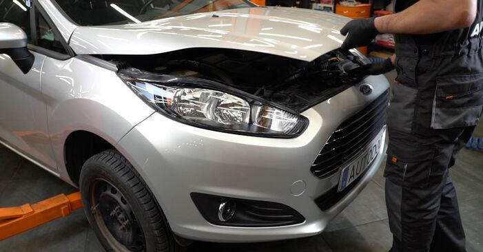 Come cambiare Filtro Olio su Ford Fiesta Mk6 2008 - manuali PDF e video gratuiti