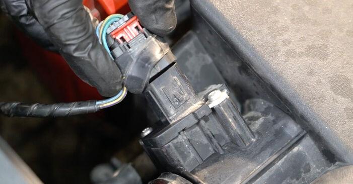 Come sostituire Filtro Olio su FORD Fiesta Mk6 Hatchback (JA8, JR8) 2013: scarica manuali PDF e istruzioni video