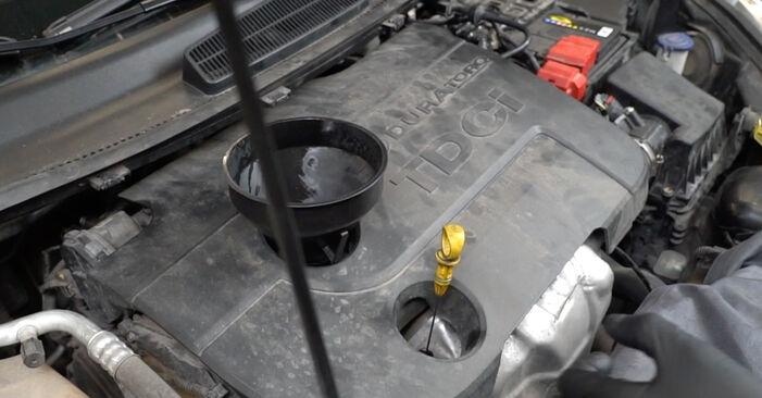 Devi sapere come rinnovare Filtro Olio su FORD FIESTA ? Questo manuale d'officina gratuito ti aiuterà a farlo da solo