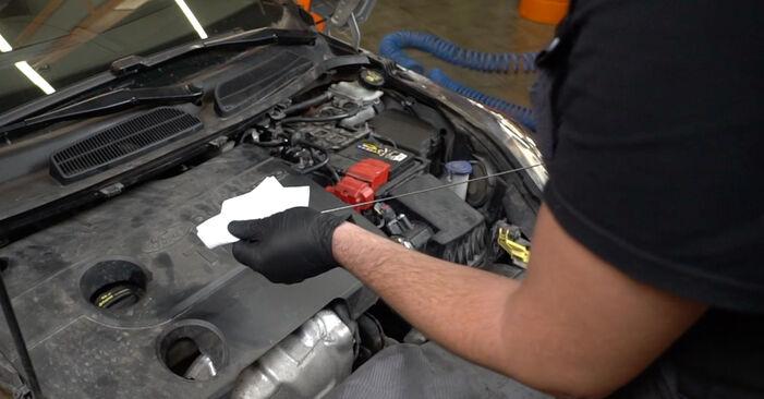 Consigli passo-passo per la sostituzione del fai da te Ford Fiesta Mk6 2021 1.4 LPG Filtro Olio
