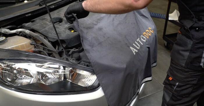 Sostituire Filtro Olio su FORD Fiesta Mk6 Hatchback (JA8, JR8) 1.6 TDCi 2008 non è più un problema con il nostro tutorial passo-passo