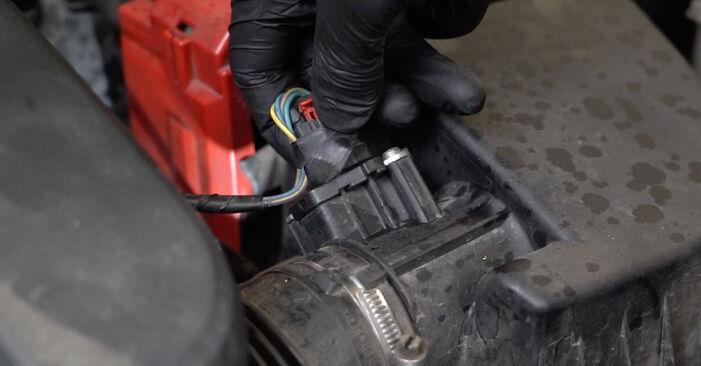 La sostituzione di Filtro Olio su Ford Fiesta Mk6 2016 non sarà un problema se segui questa guida illustrata passo-passo