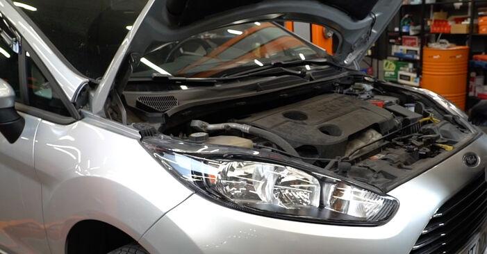 Come cambiare Filtro Carburante su Ford Fiesta Mk6 2008 - manuali PDF e video gratuiti