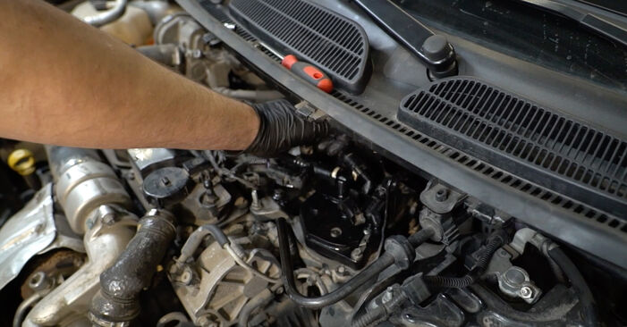 Quanto è difficile il fai da te: sostituzione Filtro Carburante su Ford Fiesta Mk6 1.4 2014 - scarica la guida illustrata