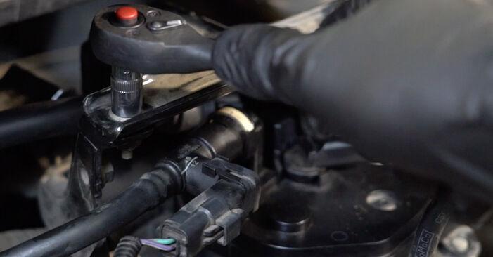 Sostituendo Filtro Carburante su Ford Fiesta Mk6 2018 1.25 da solo