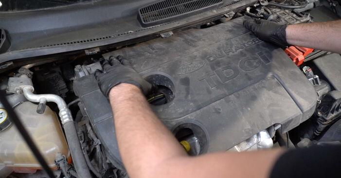 Fiesta Mk6 Hatchback (JA8, JR8) 1.4 LPG 2019 Filtro Carburante manuale di officina di ricambio fai da te