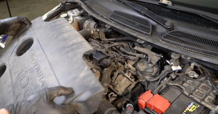 Ford Fiesta Mk6 1.4 TDCi 2010 Filtro Carburante sostituzione: manuali dell'autofficina