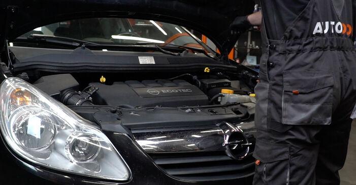 Wie Stoßdämpfer Opel Corsa D 1.3 CDTI (L08, L68) 2006 tauschen - Kostenlose PDF- und Videoanleitungen