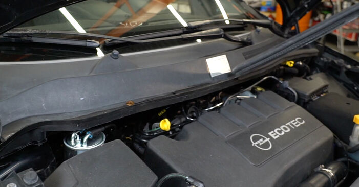 Stoßdämpfer Opel Corsa D 1.4 (L08, L68) 2008 wechseln: Kostenlose Reparaturhandbücher