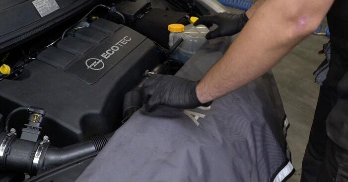 Wie Kraftstofffilter OPEL Corsa D Schrägheck (S07) 1.2 (L08, L68) 2007 austauschen - Schrittweise Handbücher und Videoanleitungen