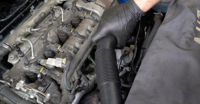 Bytte Corsa D Hatchback (S07) 1.3 CDTI (L08, L68) 2008 Oljefilter – gjør det selv med vår veiledning