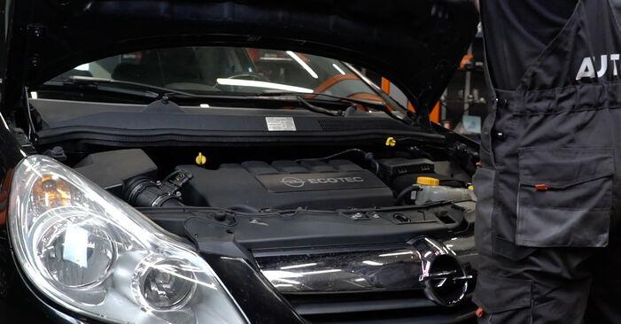 Wie Luftfilter Opel Corsa D 1.3 CDTI (L08, L68) 2006 tauschen - Kostenlose PDF- und Videoanleitungen
