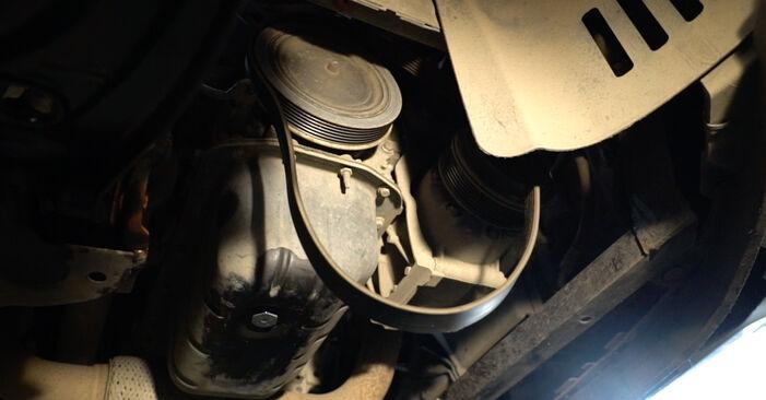 Fiesta Mk6 Hatchback (JA8, JR8) 1.4 LPG 2019 Paskirstymo diržas / komplektas savarankiško keitimo instrukcija