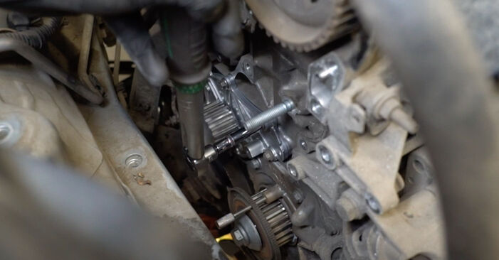 Pasikeiskite FORD Fiesta Mk6 Hatchback (JA8, JR8) 1.6 TDCi 2008 Paskirstymo diržas / komplektas patys - internetinė instrukcija