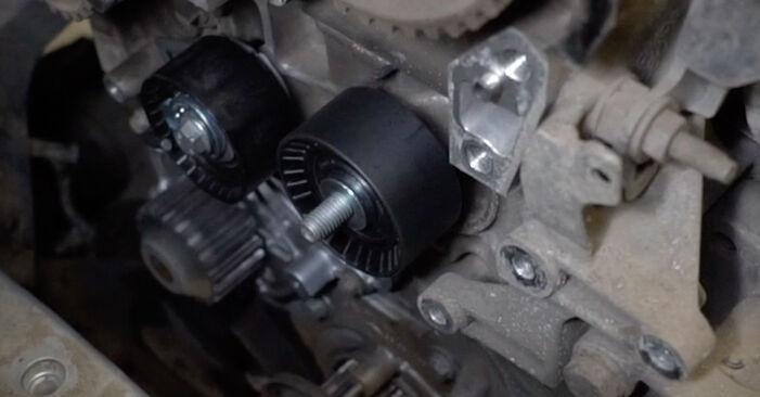 Savarankiškas FORD Fiesta Mk6 Hatchback (JA8, JR8) 1.5 TDCi 2011 Paskirstymo diržas / komplektas keitimas