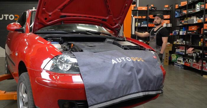 Hvordan bytte Bremseklosser på SEAT Ibiza III Hatchback (6L) 1.9 SDI 2005 selv