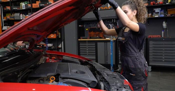 Kaip pakeisti Uždegimo žvakė la Seat Ibiza 6l1 2002 - nemokamos PDF ir vaizdo pamokos