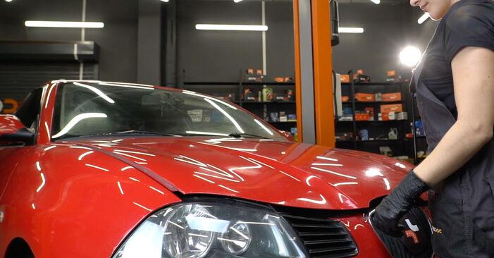 Pasikeiskite SEAT Ibiza III Hatchback (6L) 1.2 2008 Uždegimo žvakė patys - internetinė instrukcija