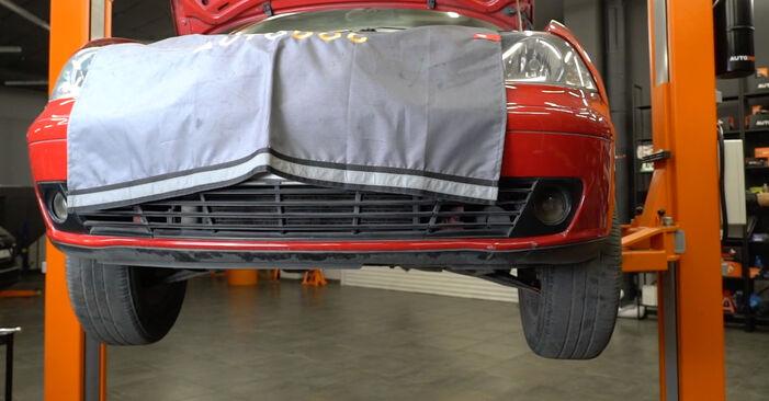 Hvordan man skifter Brændstoffilter på SEAT Ibiza III Hatchback (6L) 2006 - råd og tricks