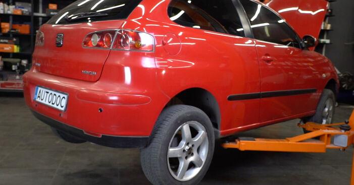 Hvordan man udskifter Brændstoffilter på Seat Ibiza 6l1 2002 - gratis PDF og video manualer