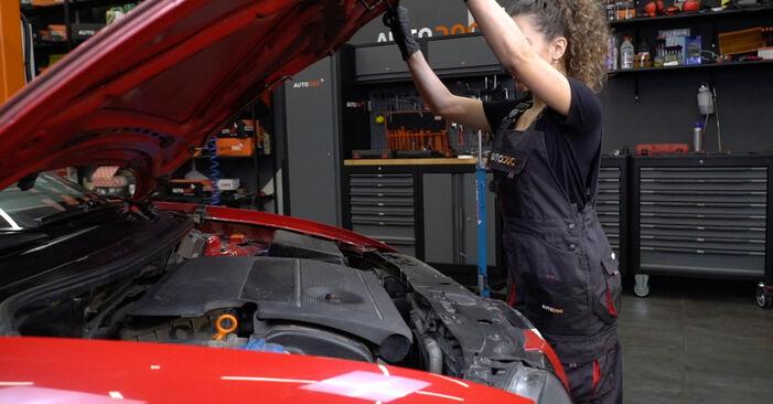 Kaip pakeisti Alyvos filtras la Seat Ibiza 6l1 2002 - nemokamos PDF ir vaizdo pamokos