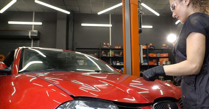 Kaip pakeisti SEAT Ibiza III Hatchback (6L) 2006 Alyvos filtras - patarimai ir gudrybės