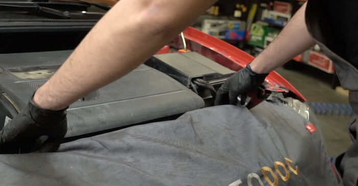 DIY replacement of Springs on SEAT Ibiza III Hatchback (6L) 1.2 2008 is not an issue anymore with our step-by-step tutorial