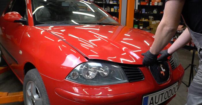 Kaip pakeisti Amortizatoriaus Atraminis Guolis la Seat Ibiza 6l1 2002 - nemokamos PDF ir vaizdo pamokos