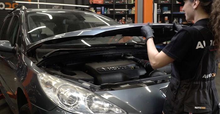 Wie Kraftstofffilter Peugeot 307 SW 1.6 HDI 110 2002 tauschen - Kostenlose PDF- und Videoanleitungen