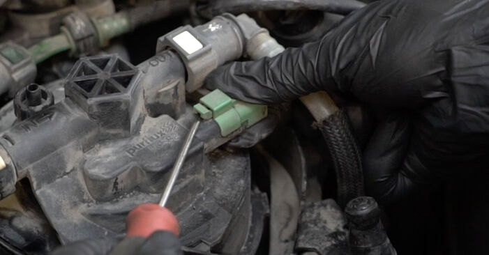 Wie PEUGEOT 307 2.0 HDi 135 2006 Kraftstofffilter ausbauen - Einfach zu verstehende Anleitungen online