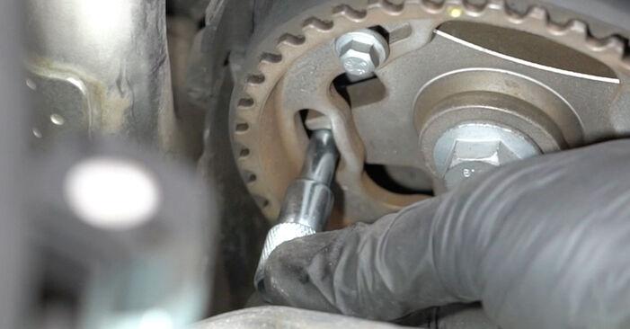 Wasserpumpe + Zahnriemensatz beim RENAULT CLIO 1.4 16V 2012 selber erneuern - DIY-Manual