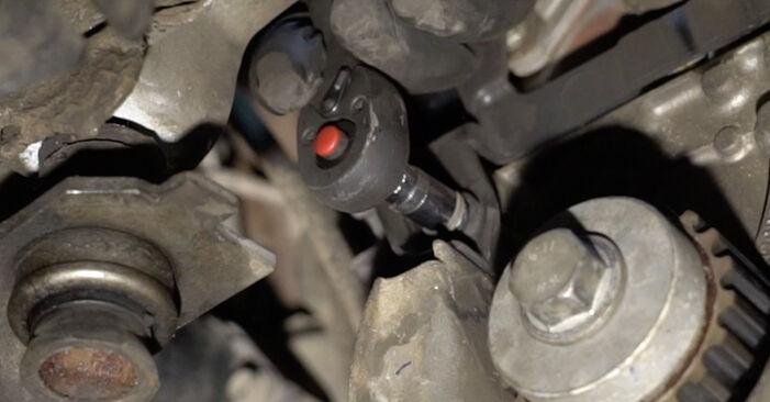 Schritt-für-Schritt-Anleitung zum selbstständigen Wechsel von Renault Clio 3 2008 1.2 16V Hi-Flex Wasserpumpe + Zahnriemensatz