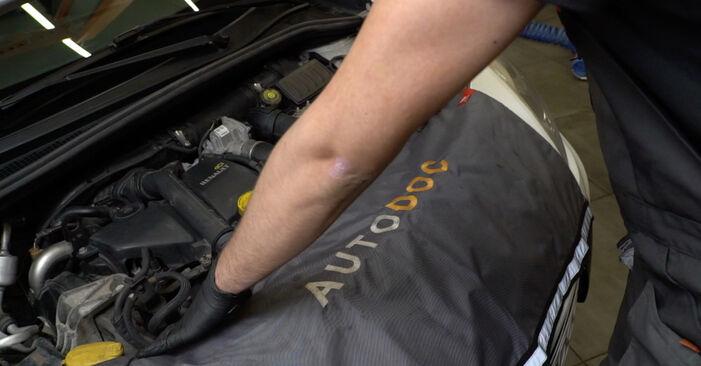 Come sostituire RENAULT Clio III Hatchback (BR0/1, CR0/1) 1.5 dCi 2006 Motorino Tergicristallo - manuali passo passo e video guide