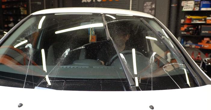 La sostituzione di Motorino Tergicristallo su Renault Clio 3 2013 non sarà un problema se segui questa guida illustrata passo-passo