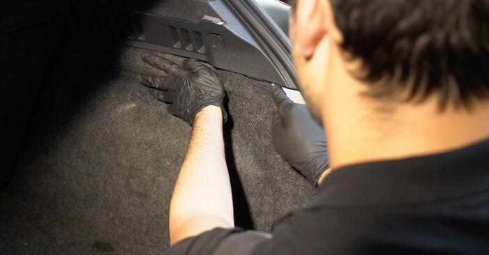 Schritt-für-Schritt-Anleitung zum selbstständigen Wechsel von Renault Clio 3 2008 1.2 16V Hi-Flex Stoßdämpfer