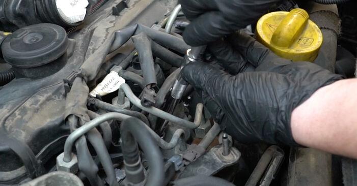 Zweckdienliche Tipps zum Austausch von Glühkerzen beim RENAULT Clio III Schrägheck (BR0/1, CR0/1) 1.4 16V 2009