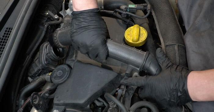 Wie schwer ist es, selbst zu reparieren: Glühkerzen Renault Clio 3 1.2 16V 2011 Tausch - Downloaden Sie sich illustrierte Anleitungen
