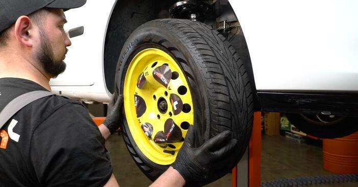 Wie schwer ist es, selbst zu reparieren: Kraftstofffilter Renault Clio 3 1.2 16V 2011 Tausch - Downloaden Sie sich illustrierte Anleitungen
