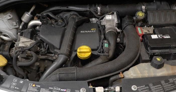 Clio III Schrägheck (BR0/1, CR0/1) 1.2 16V Hi-Flex 2006 1.2 16V Kraftstofffilter - Handbuch zum Wechsel und der Reparatur eigenständig