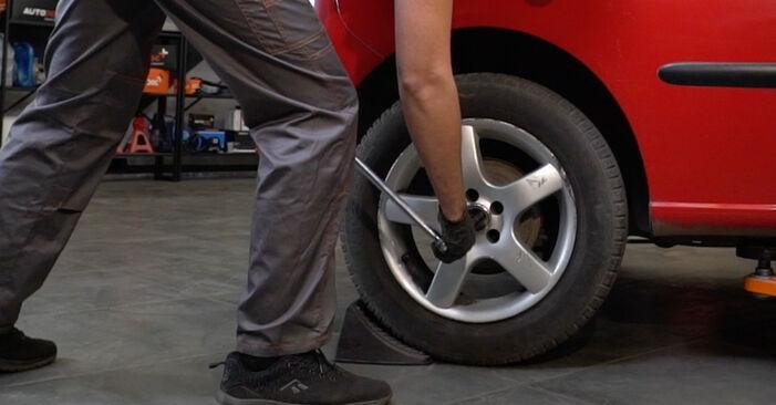 Wie Radlager SEAT Ibiza III Schrägheck (6L) 1.4 16V 2003 austauschen - Schrittweise Handbücher und Videoanleitungen